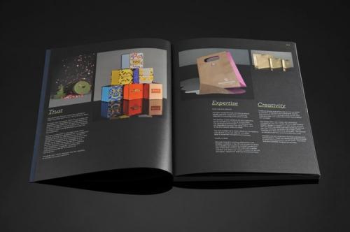 nội dung catalogue gồm những gì