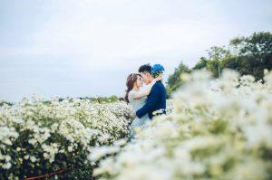 chụp hình cưới cánh đồng hoa
